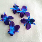 purple blue silk orchids